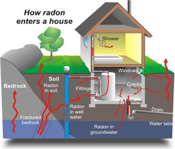 Home Buyers Protection Radon Infographic